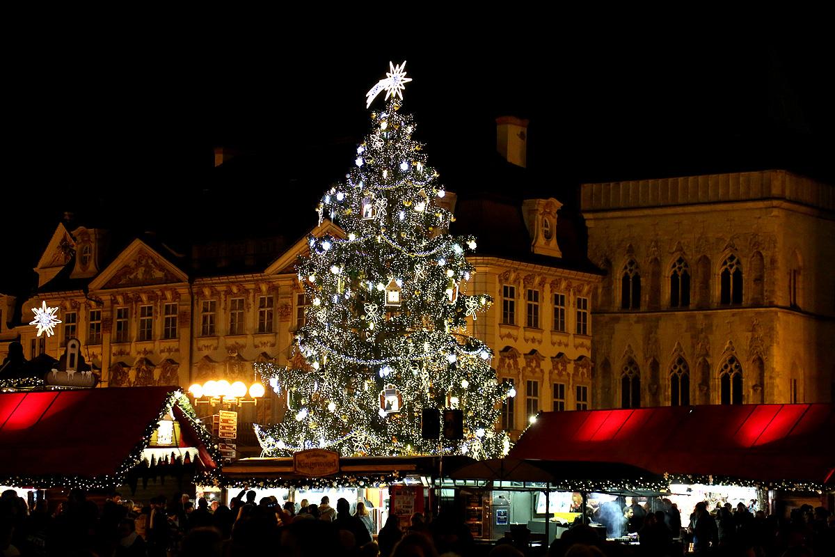 Weihnachtsbaum-Prag